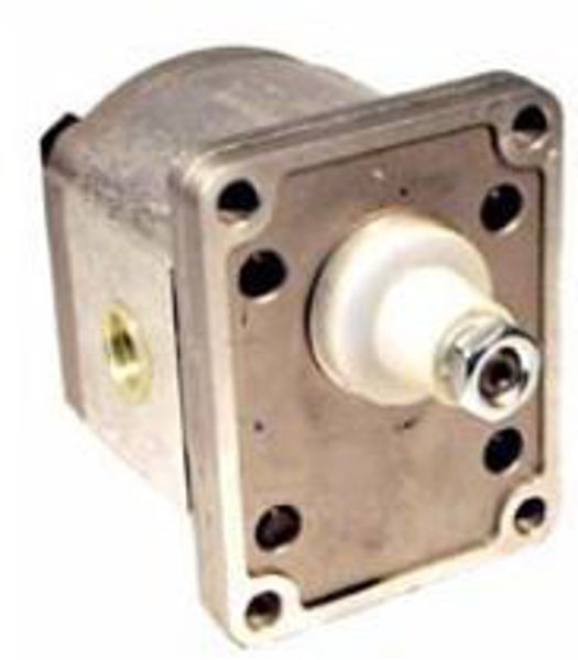Picture of Gear Pump - Group 1 Euro Mount (H/Duty Taper Shaft) for BSPP ports