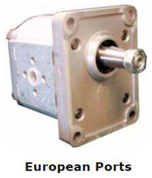 Picture of Gear Pump - Group 2 Euro Mount (Taper Shaft) for European Ports