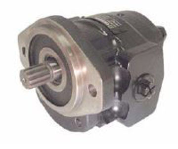 Picture of Gear Pump - Group 2  SAE Mount with Threaded Ports