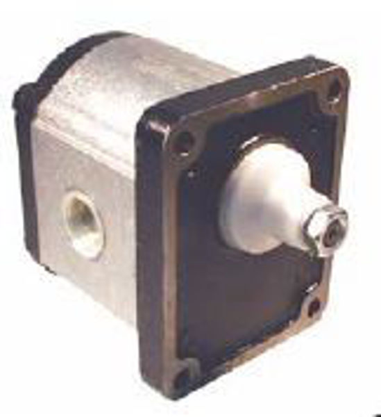 Picture of Gear Pump - Group 3  Euro Mount with Threaded Ports