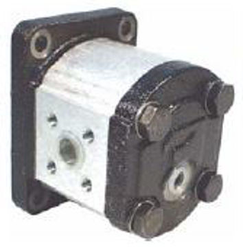 Picture of Gear Motor - Group 1 Euro Mount (H/Duty Taper Shaft) for BSPP ports